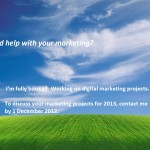 Need help with your marketing in 2013?